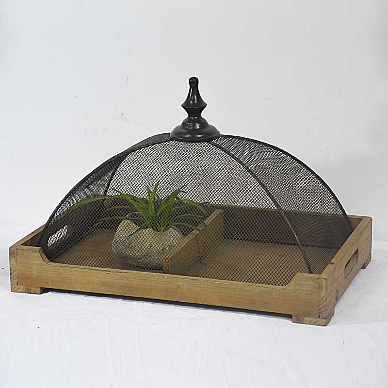 Beautiful Shabby Chic Antique Wooden Tray with Mesh Dome