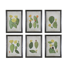 6 Sets Vintage Style Framed Flower Wall Art